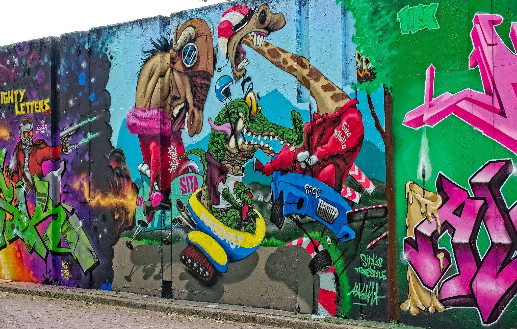 step-in-the-arena-berenkuil-2018-streetart-fran-van-beers-23